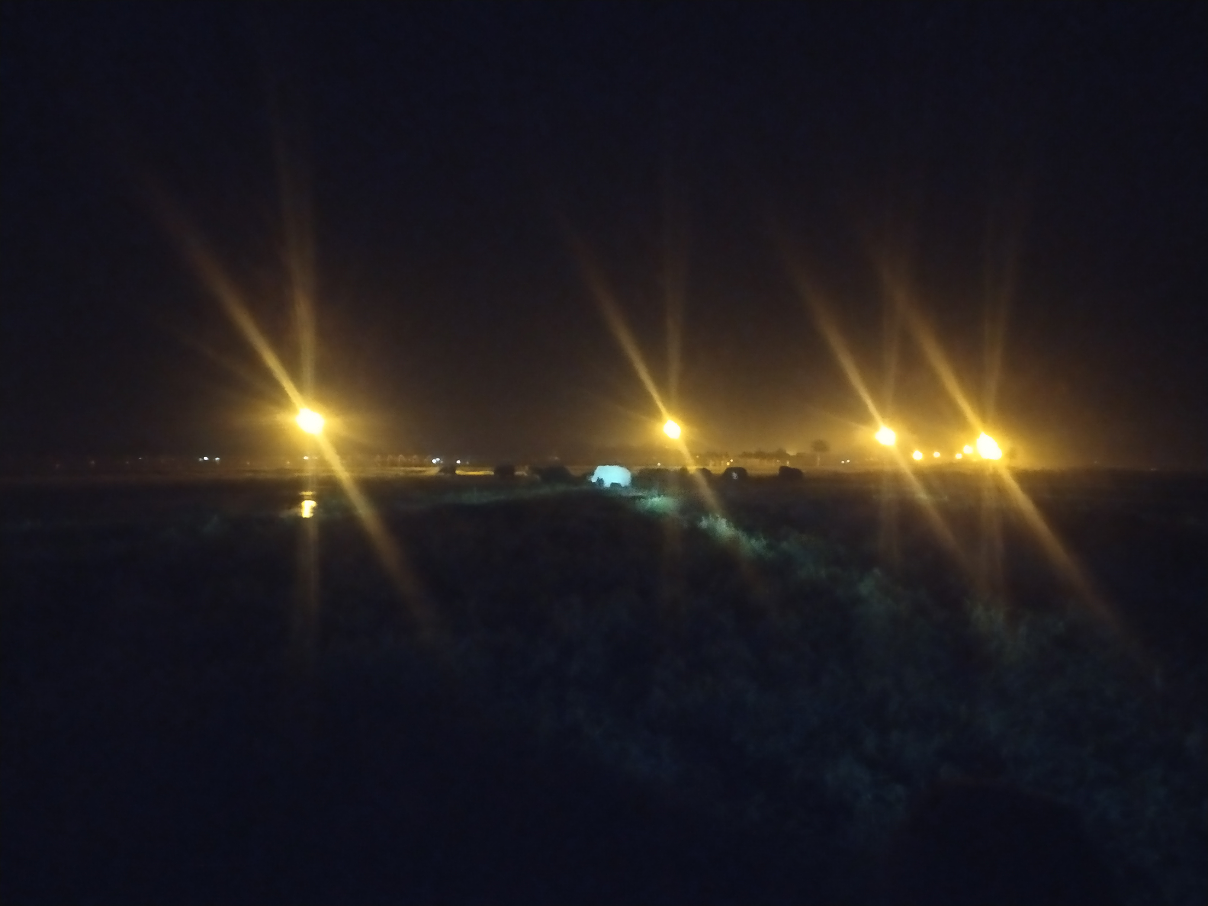 বকশীগঞ্জে হাতির তাড়া খেয়ে কৃষকের মৃত্যু
